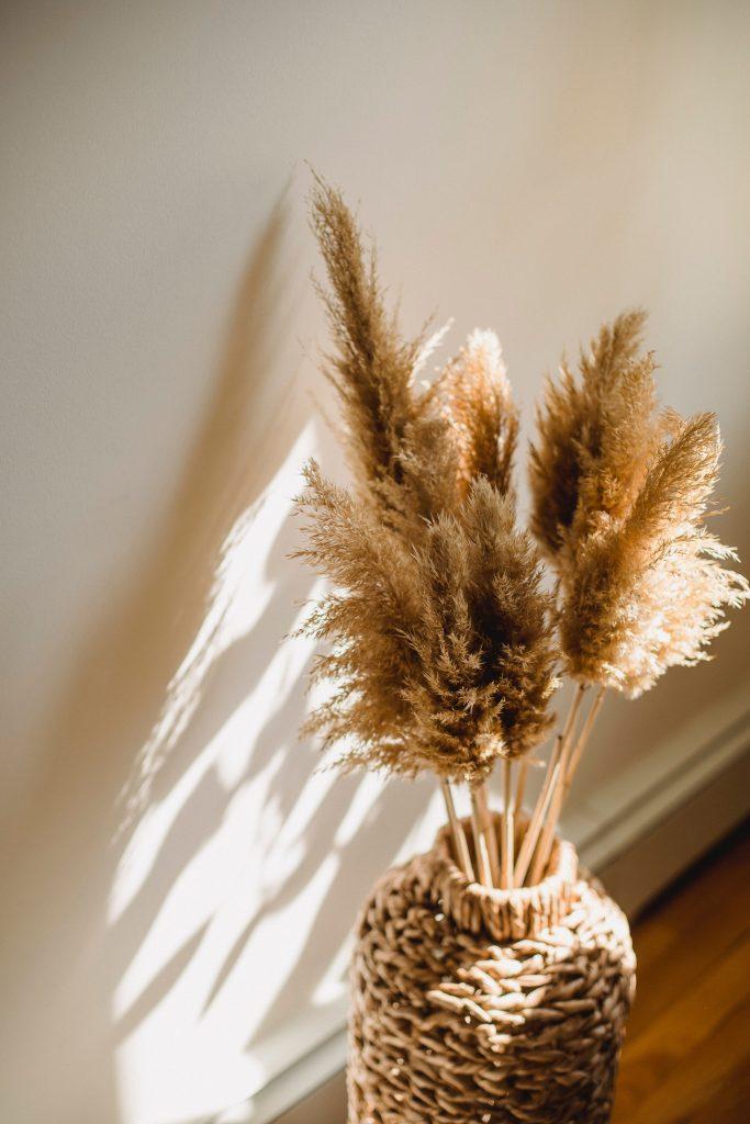 Цвет удачи: Какой цвет может принести процветание Козерогу