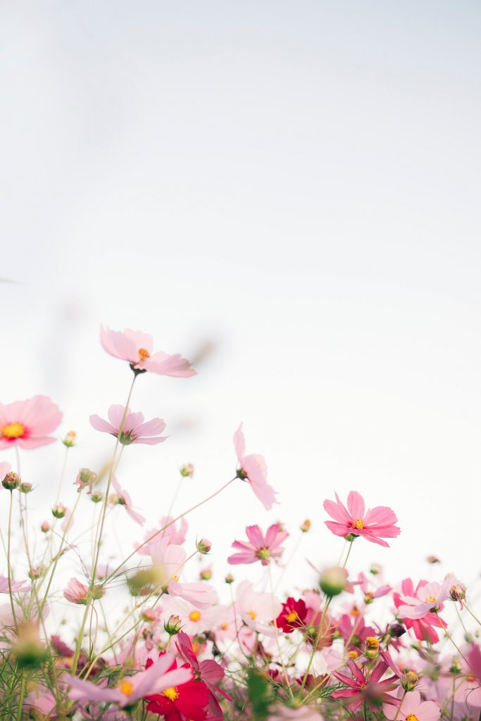 10 вещей, которые нужно сделать этой весной