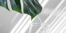 Как начать пить больше воды? 5 советов